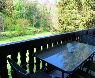 Enjoy Winterberg Appartement Balkon